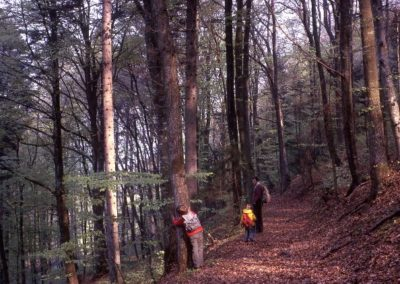 1973: Walking through the Swiss forests